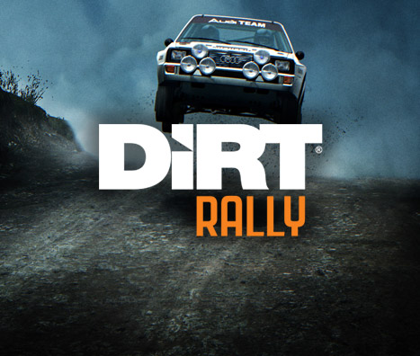 A pure expression of rally, the pinnacle of off-road motor racing