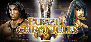 [Cover] Puzzle Chronicles