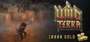 [Cover] Wild Terra Online - Gold 10000