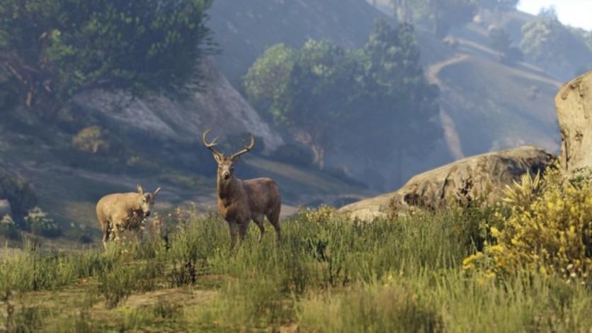 Screenshot 43 - Grand Theft Auto V