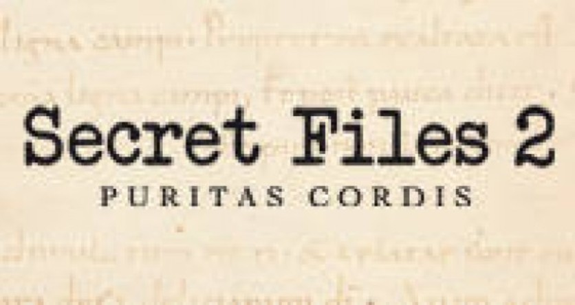 Screenshot 3 - Secret Files 2: Puritas Cordis