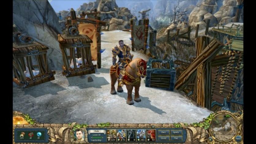 Screenshot 5 - King's Bounty: The Legend