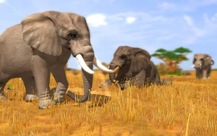 Screenshot 29 - Wildlife Park 3