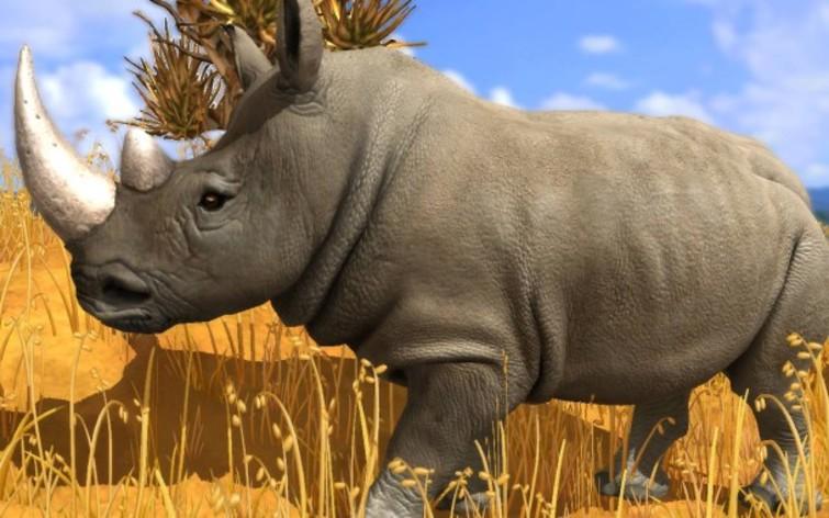 Screenshot 10 - Wildlife Park 3