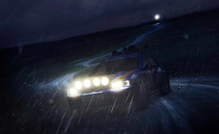 Screenshot 18 - DiRT Rally
