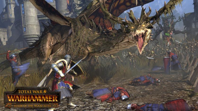 Screenshot 3 - Total War: WARHAMMER - Realm of The Wood Elves