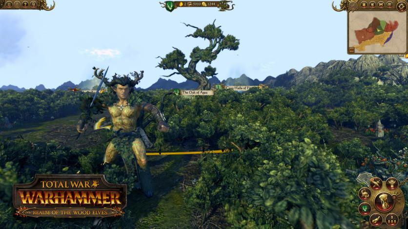 Screenshot 4 - Total War: WARHAMMER - Realm of The Wood Elves