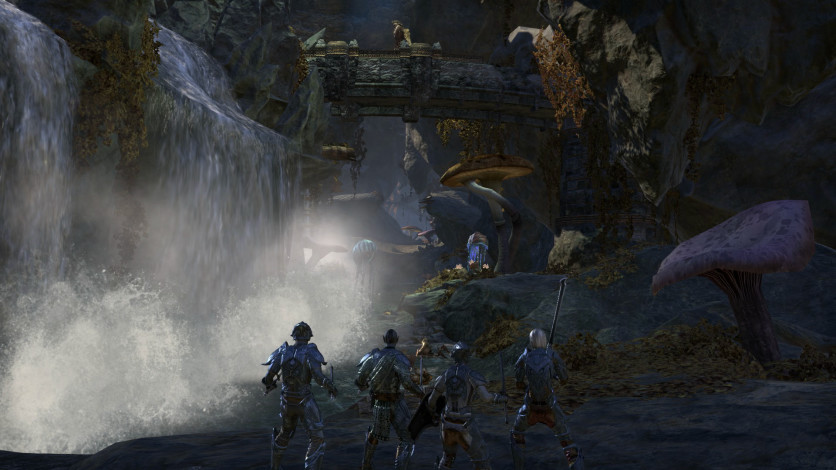 Screenshot 6 - The Elder Scrolls Online - Morrowind - Digital Collector's Edition Upgrade